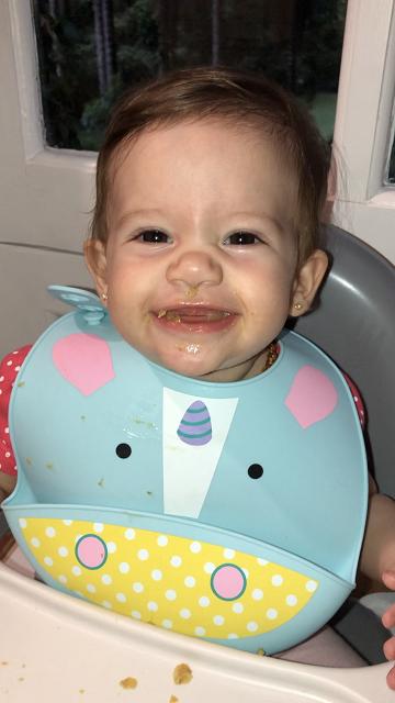 alimentação do bebê em viagens